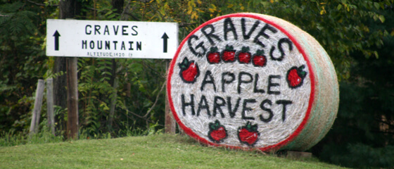 graves apple harvest painted on a round hay bale