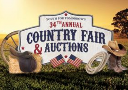 34th County Fair & Auctions
